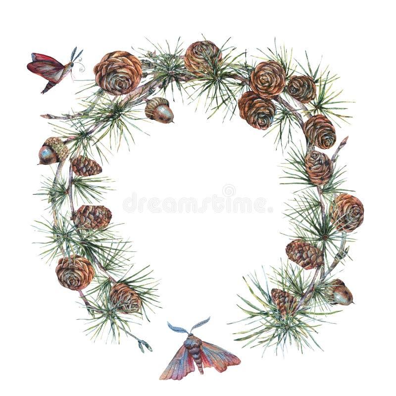 Guirnalda o guirnalda del bosque de la acuarela con la puntilla del árbol de abeto ilustración del vector