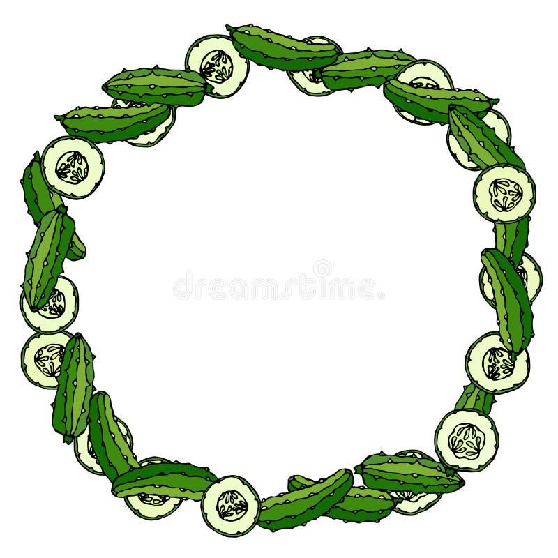 Guirnalda o marco redondo con los pepinos o el pepinillo verdes, rebanadas del pepino con las semillas Ensalada vegetal madura fr libre illustration