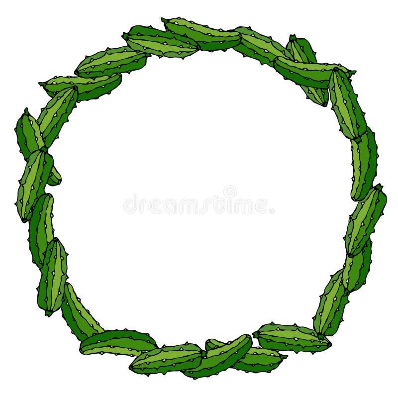 Guirnalda o marco redondo con los pepinos o el pepinillo verdes Verdura madura fresca Menú vegetariano sano Illustrati dibujado m ilustración del vector