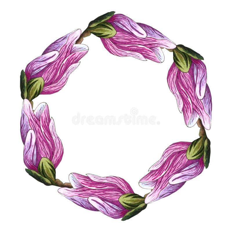 Guirnalda redonda floral con las flores de la magnolia Guirnalda, flores del marco watercolor ilustración del vector
