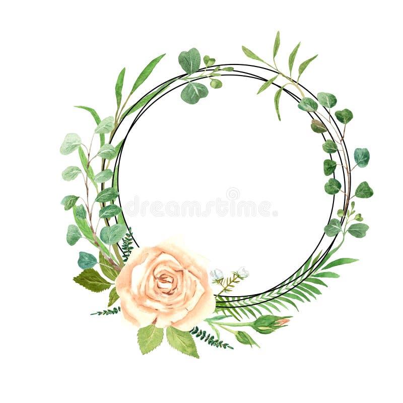 Guirnalda Rose de la acuarela y eucalipto fotografía de archivo