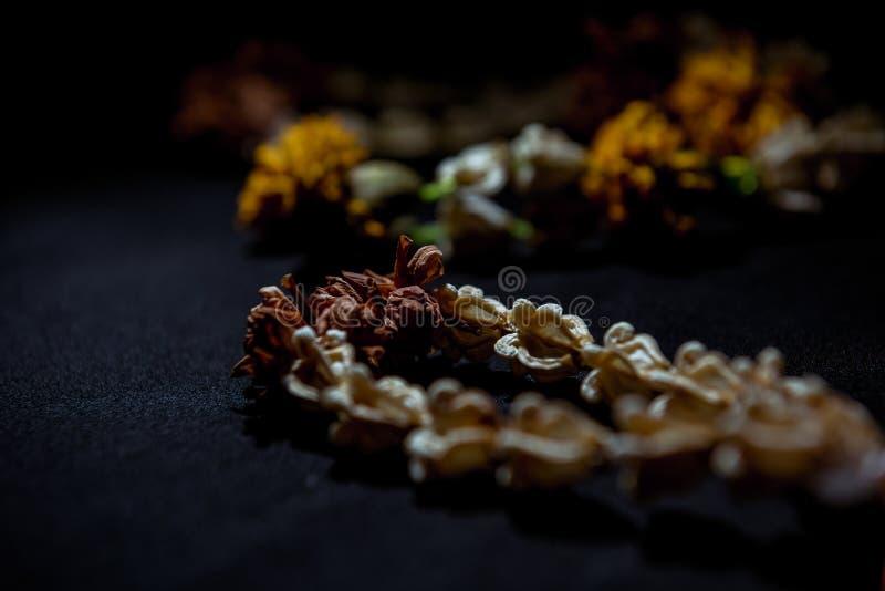 Guirnalda secada de la flor foto de archivo libre de regalías