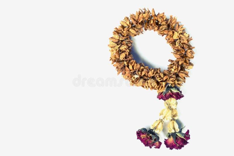 Guirnalda secada de la flor foto de archivo