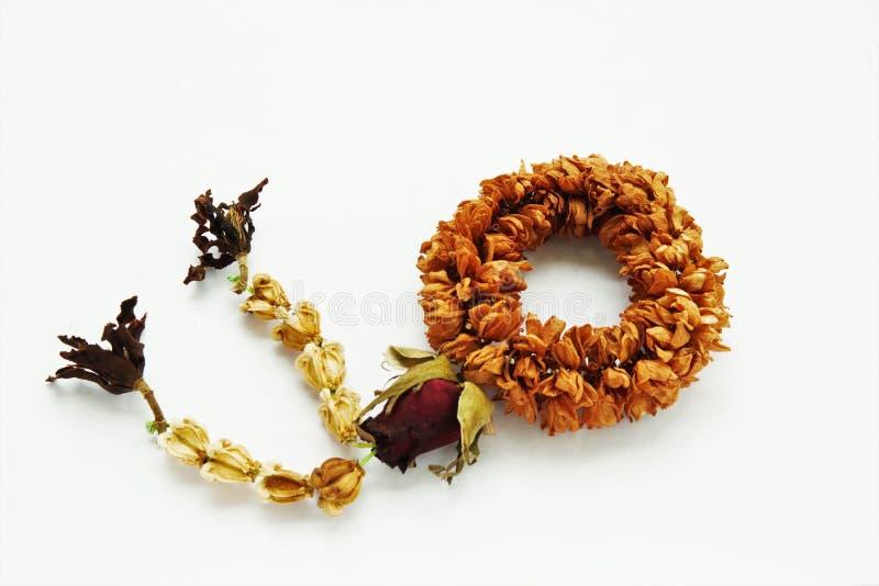 Guirnalda secada de la flor imágenes de archivo libres de regalías