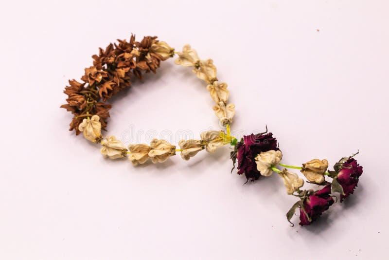 Guirnalda secada vieja de las flores aisladas contra en el fondo blanco foto de archivo libre de regalías