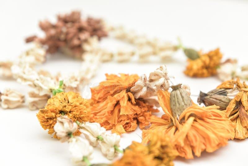 Guirnaldas secadas de la flor imagen de archivo libre de regalías