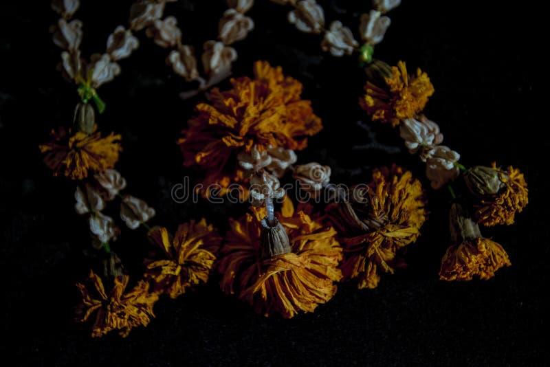 Guirnaldas secadas de la flor fotografía de archivo