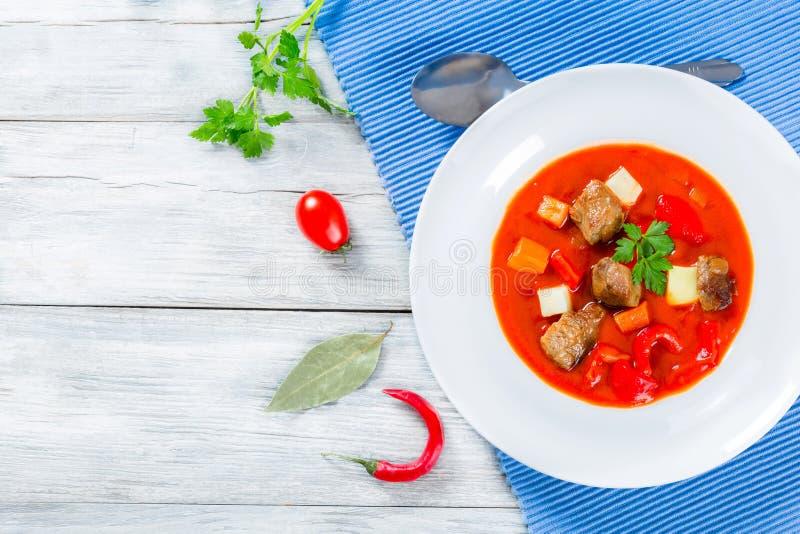 Guisado de carne com vegetais ou goulash, refeição húngara tradicional fotografia de stock