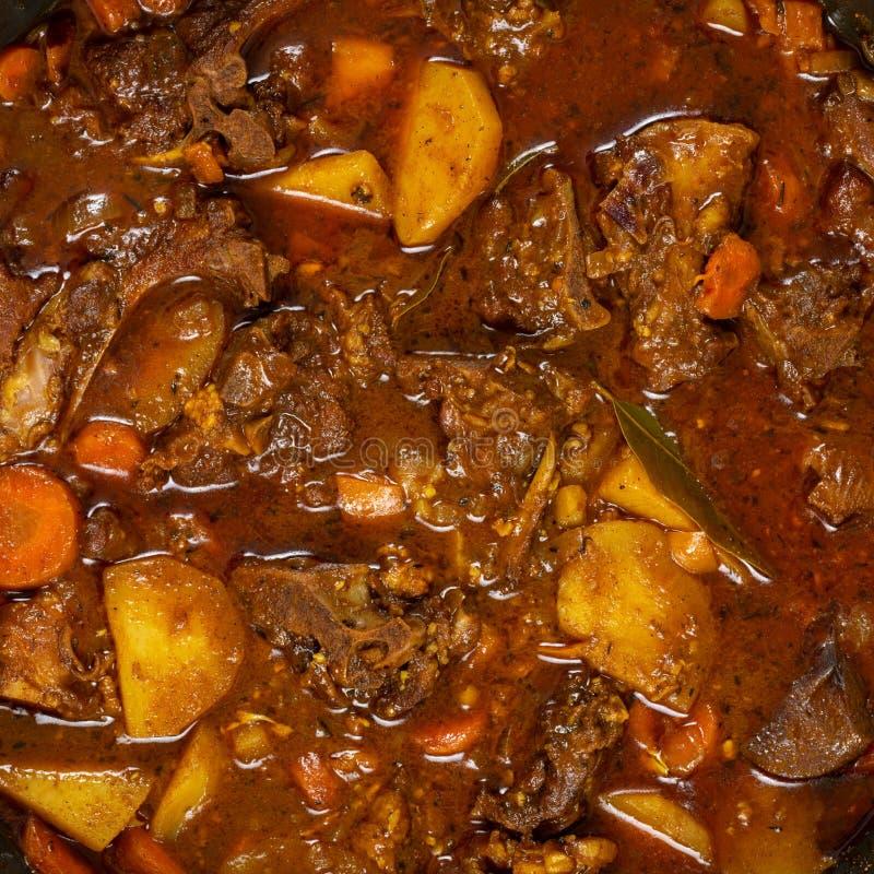 Guisado del curry de la cabra imagenes de archivo