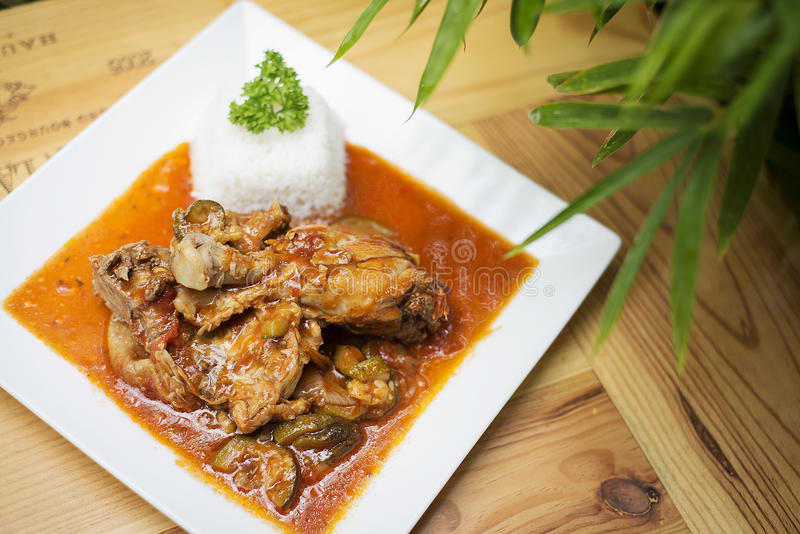 Guisado picante da galinha e do tomate foto de stock