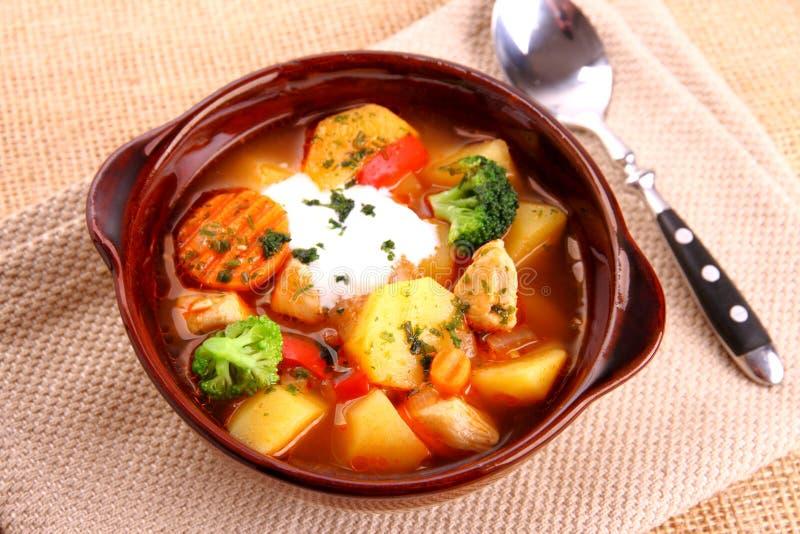 Guisado vegetal con el pollo, la patata y la crema agria imagen de archivo libre de regalías