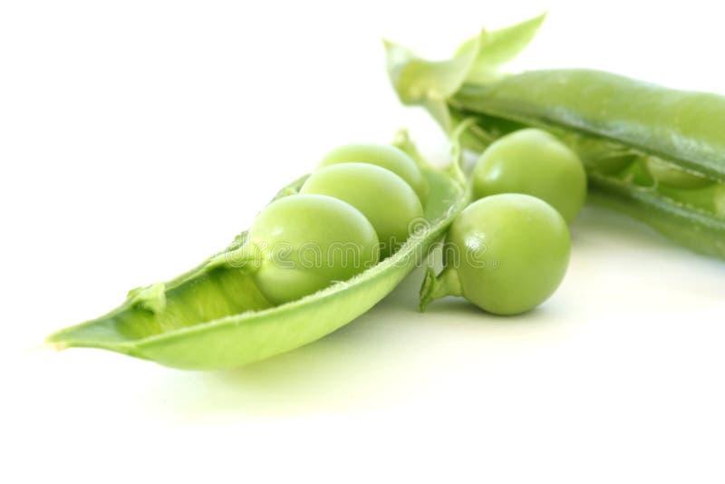 Guisante verde en vaina fotografía de archivo