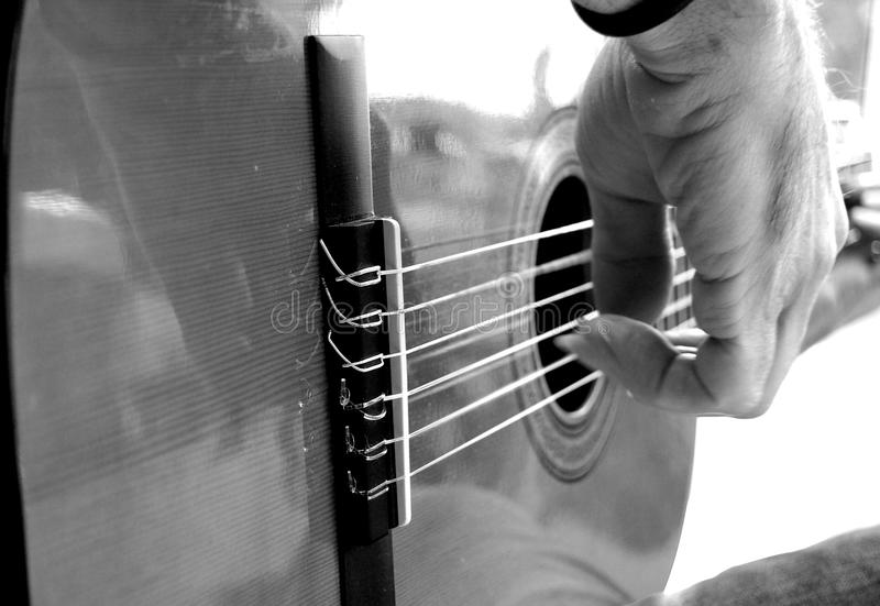Download Guitar stock photo. Image of music, musical, acoustic - 12929084