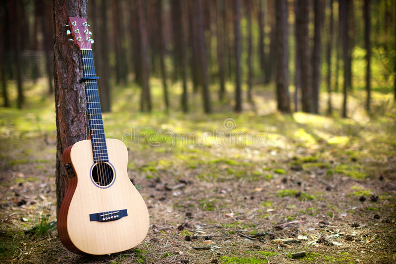 Guitar in forest. Acoustic guitar in the forest royalty free stock photo