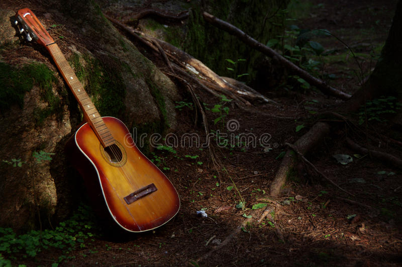 Guitar in the forest royalty free stock image