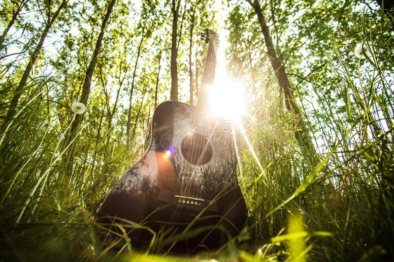 Guitar in the forest royalty free stock images
