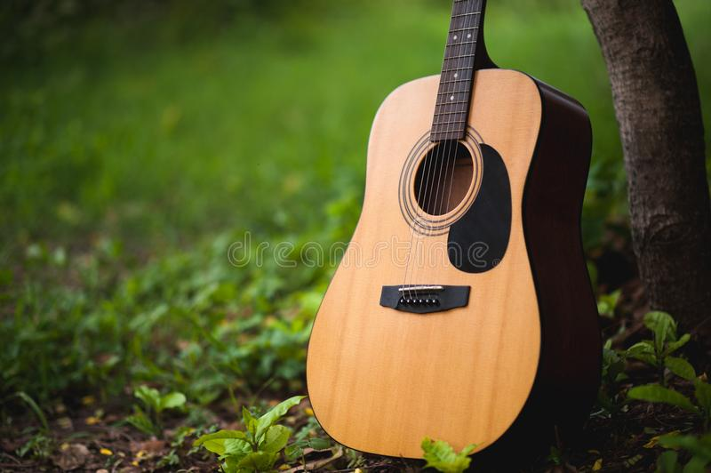Guitar in the forest Take a guitar to the forest. Universal musical instruments The so-called guitar placed in the forest royalty free stock image
