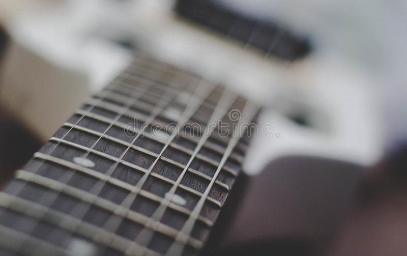 Guitar fret royalty free stock images