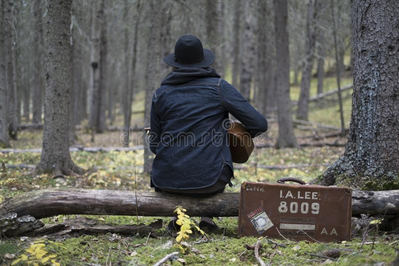 Guitar Music Man Forest royalty free stock images
