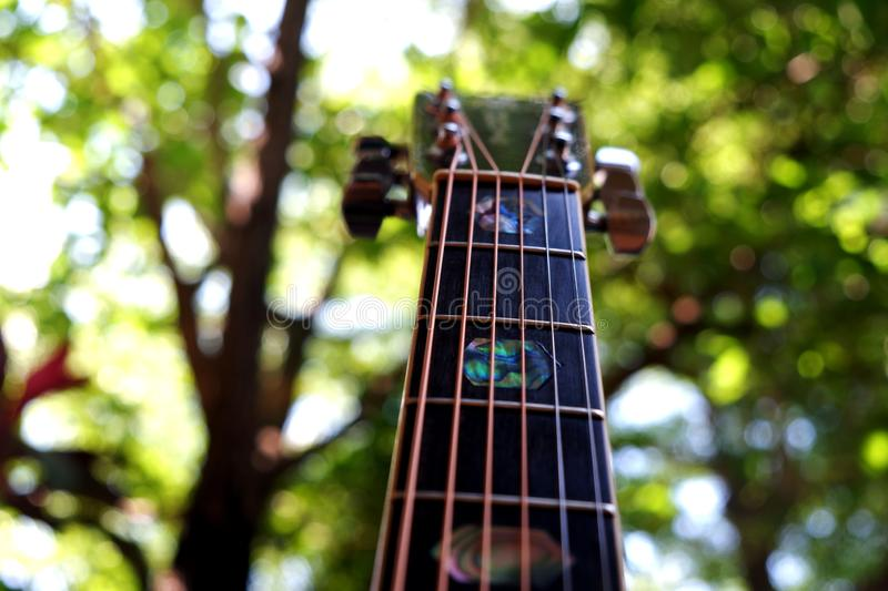 The Guitar royalty free stock images