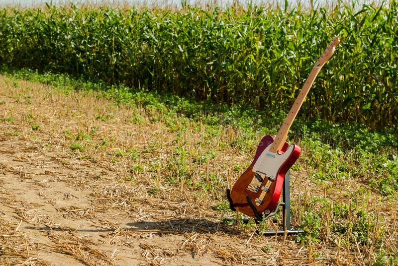 Guitar telecaster in red color against the background of a cornfield royalty free stock image