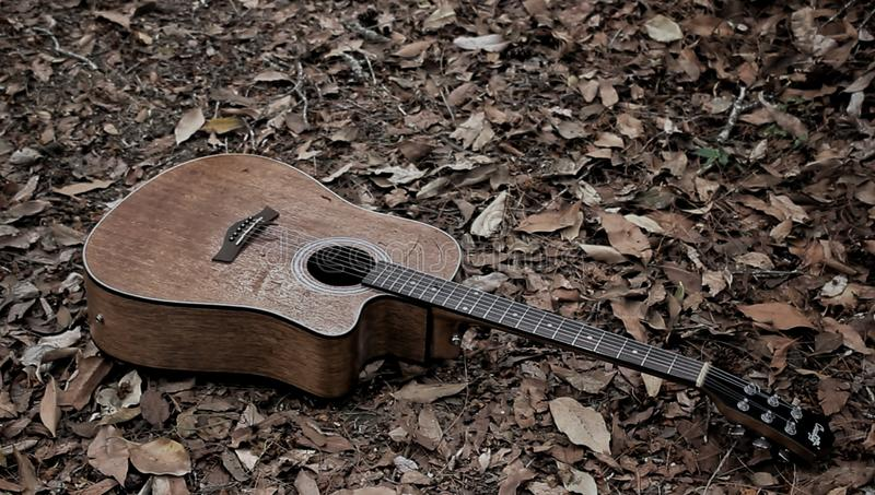 guitar that was wasted in the woods stock photo