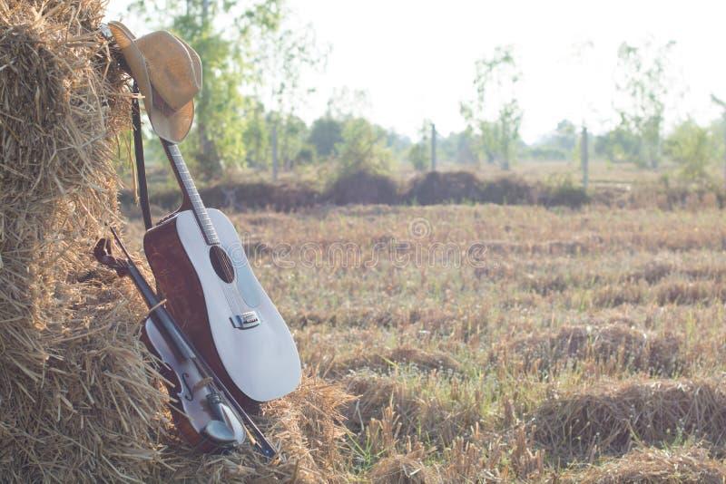 Guitare et violon se reposant sur la Division de paille dans les domaines, W images stock