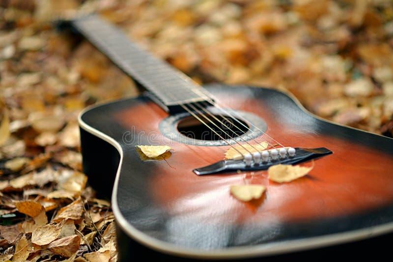 Guitarra acústica no parque do outono fotografia de stock