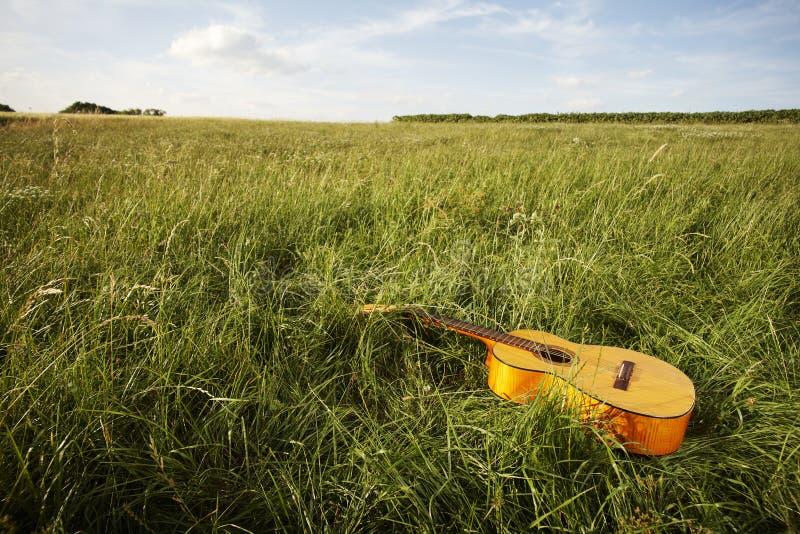 Guitarra de madeira que encontra-se no campo gramíneo imagem de stock