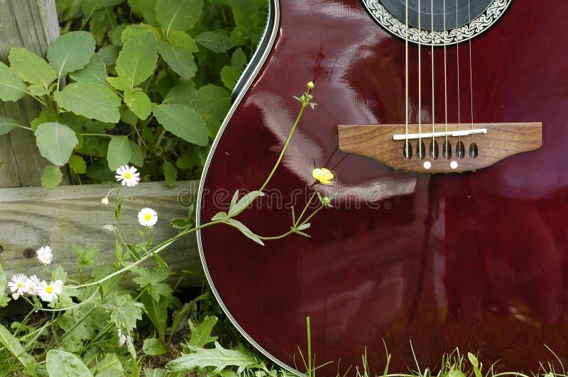 Guitarra do país foto de stock