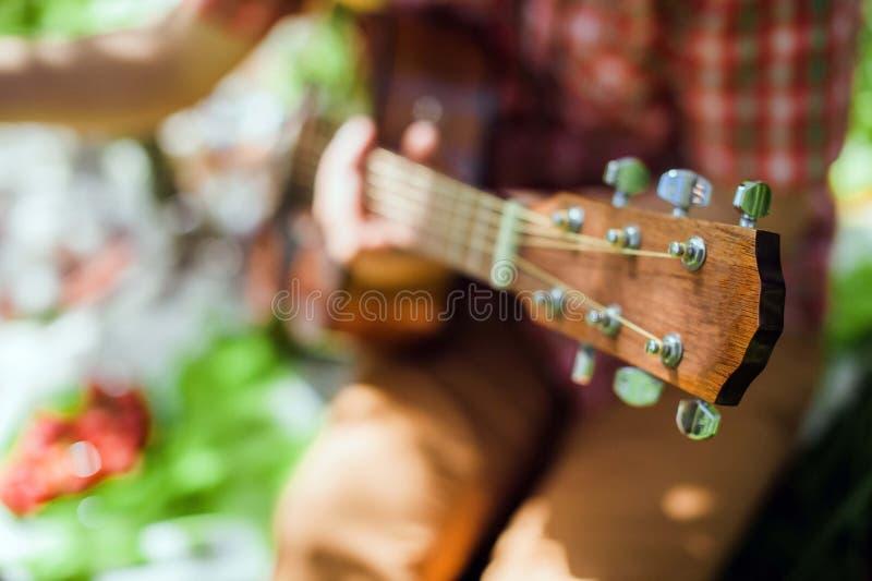 Guitarra en comida campestre en parque imagenes de archivo
