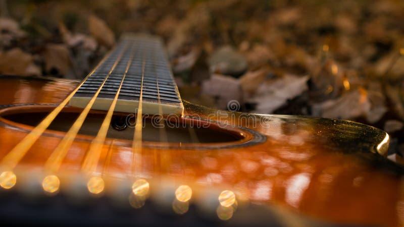 Guitarra nas folhas e no bokeh do outono foto de stock royalty free
