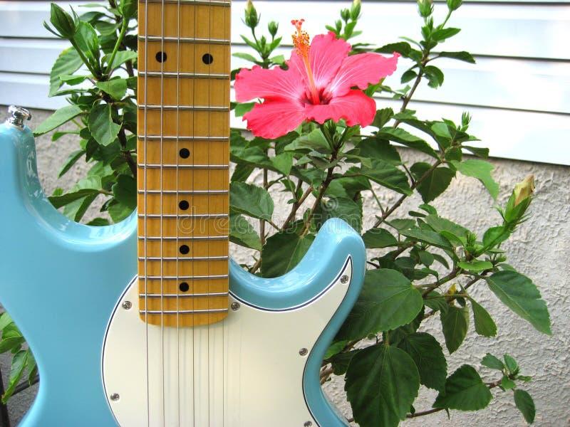 Guitarra y hibisco imagen de archivo libre de regalías