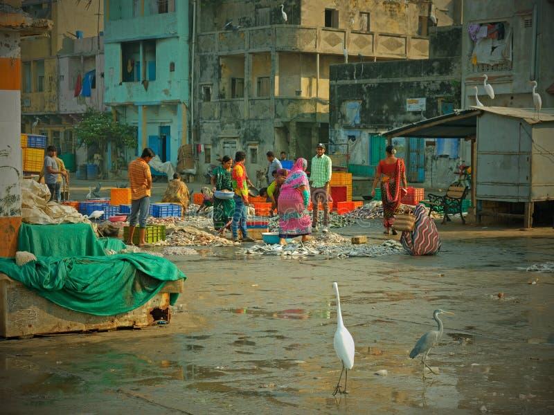 Gujaratikai, nachdem die lokale Fischereiflotte seinen Fang gelandet hat lizenzfreie stockfotografie