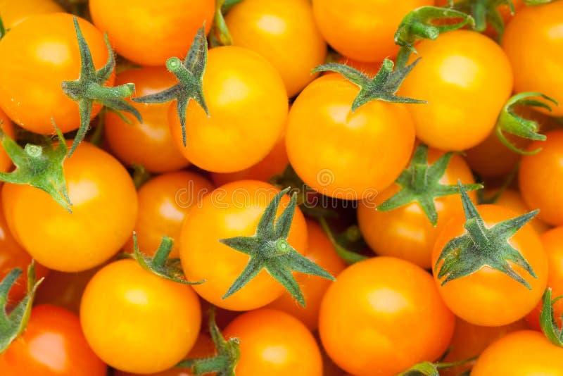 Gul bakgrund för körsbärsröd tomat arkivfoto