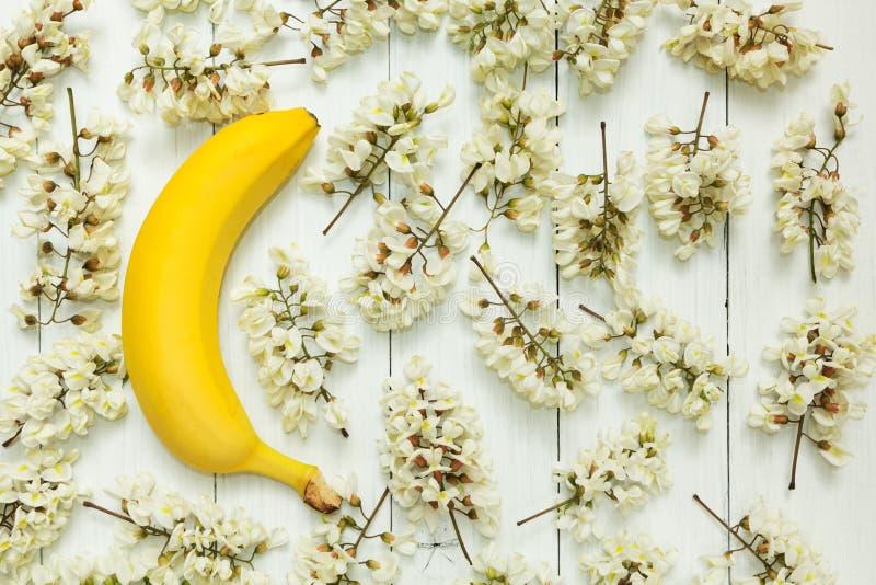 Gul banan på en bakgrund av vita akaciablommor arkivfoton