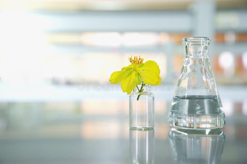 Gul blomma med den glass lilla medicinflaskan och vetenskapsflaskan i laboratorium royaltyfri bild