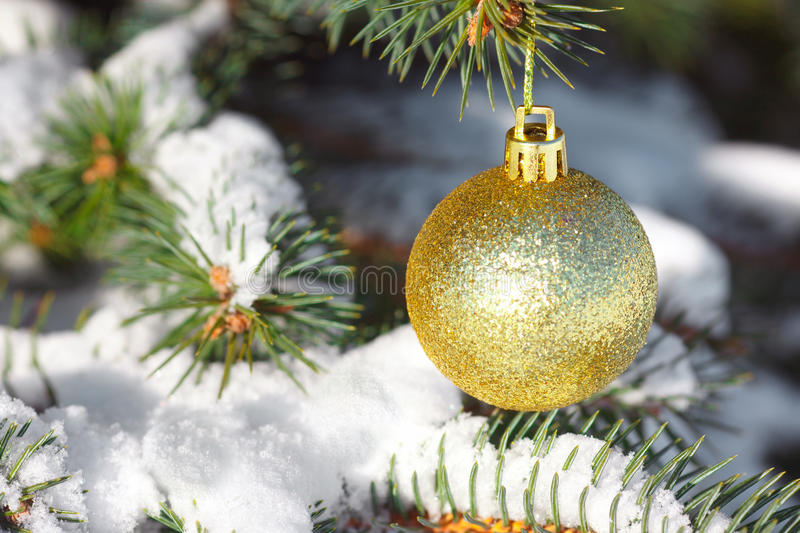 Gul boll på julgranen royaltyfri bild