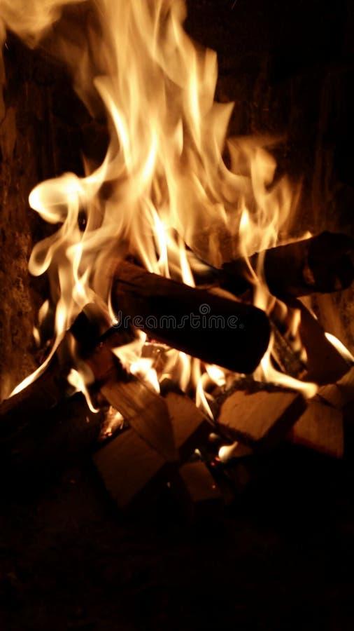Gul brand arkivfoto