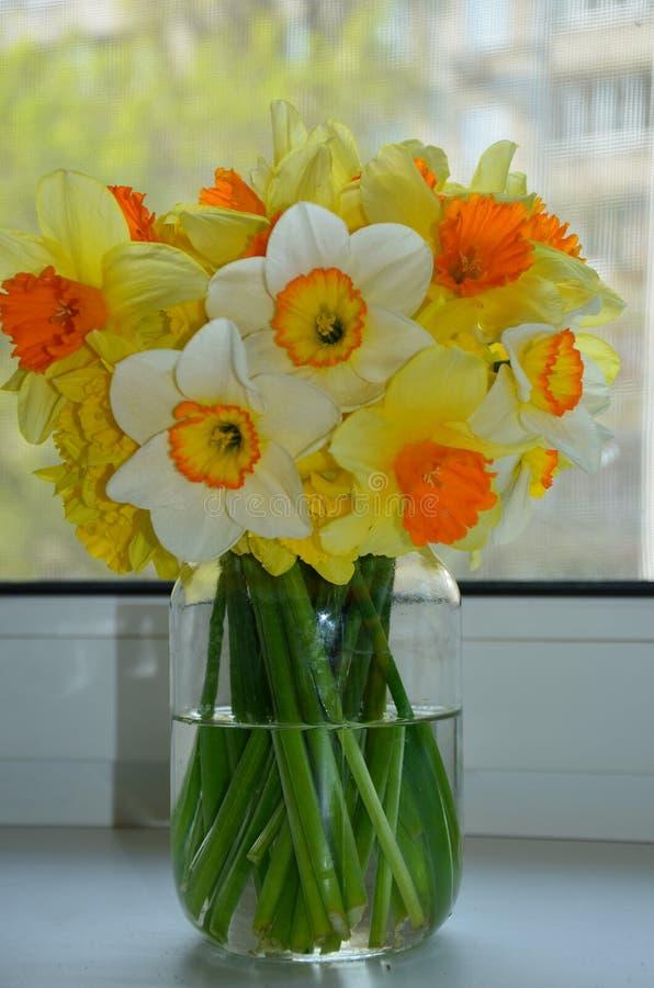 Gul bukett av blomningpingstliljan royaltyfria foton