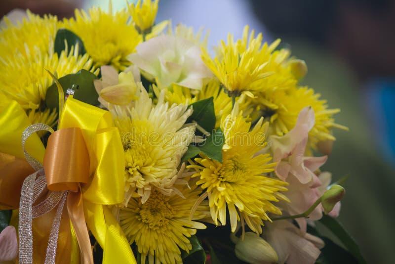 Gul chrysanthemumblomma arkivfoto