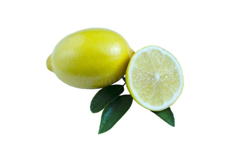 Gul citron och halvacitron med sidor på mjuka signaler för vit bakgrund arkivfoto