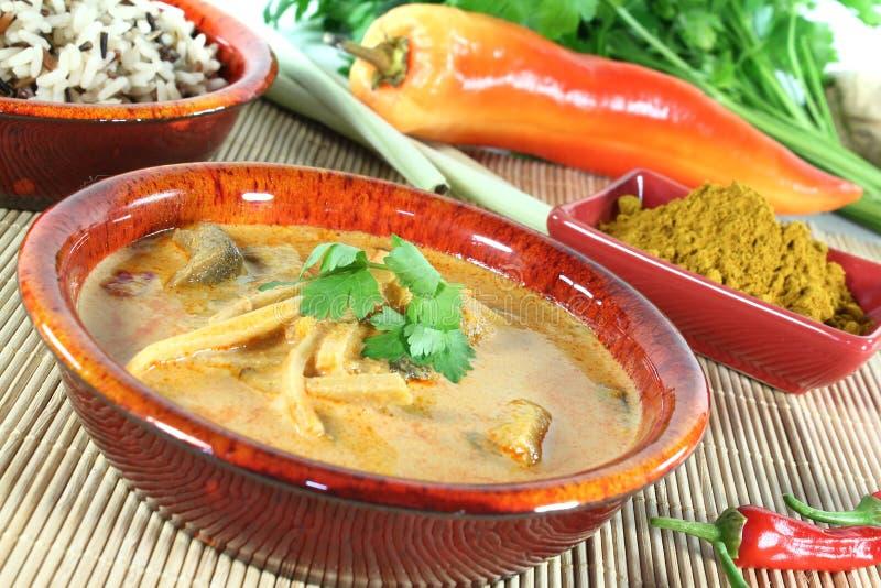 Gul curry arkivbild