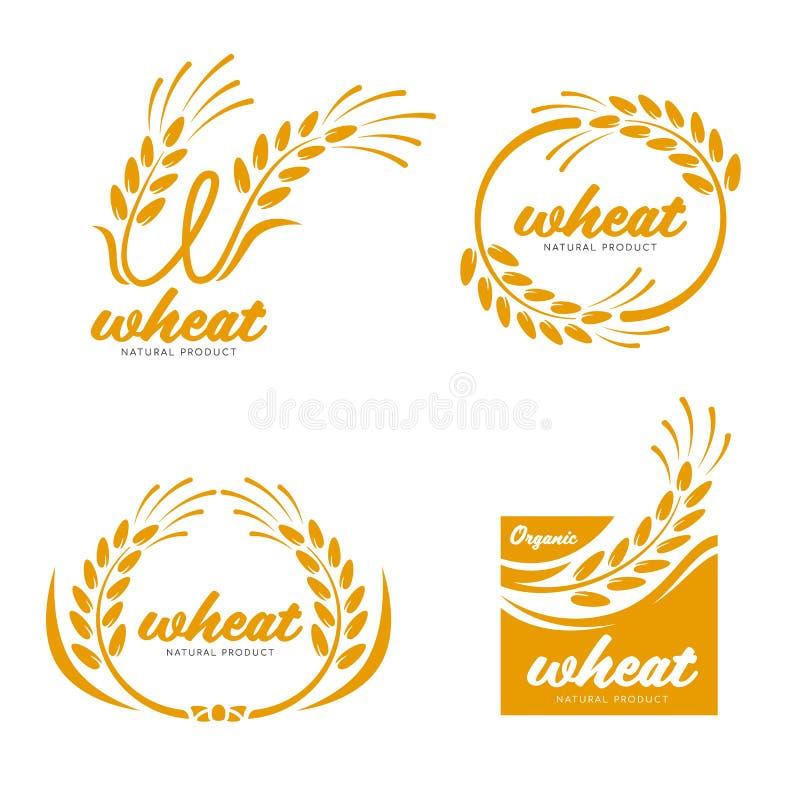 Gul design för konst för vektor för logo för tecken för baner för mat för produkter för Paddy Wheat riskorn vektor illustrationer