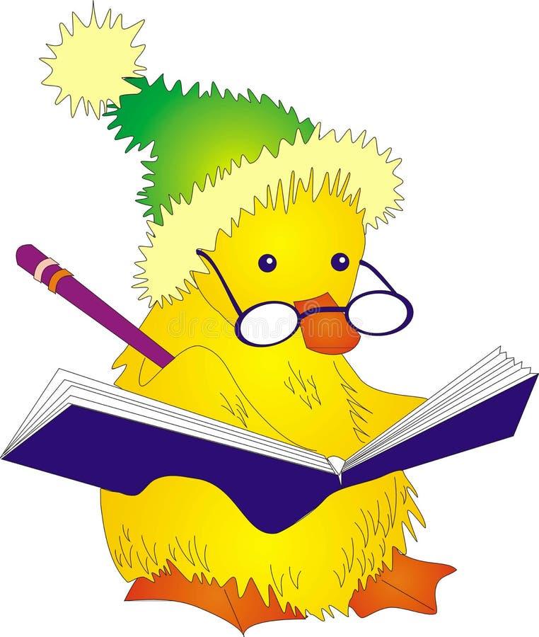 Gul duckling royaltyfri fotografi