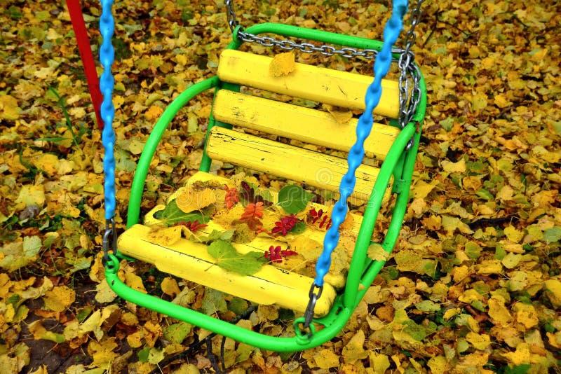gul gunga i hösten parkerar arkivbilder