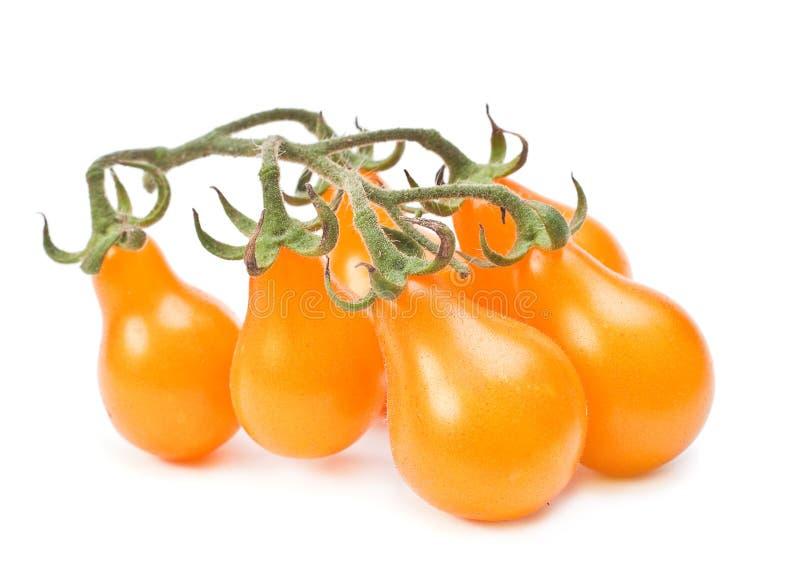 Gul körsbärsröd tomat arkivfoton