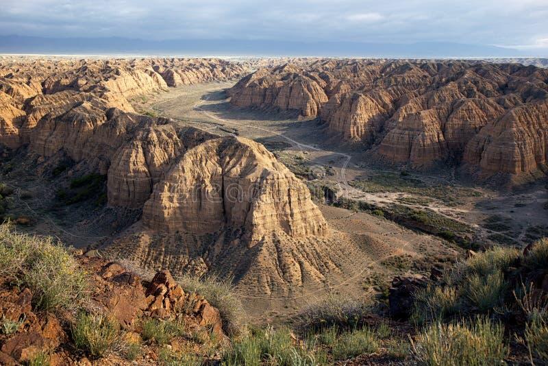 Gul kanjon arkivbild