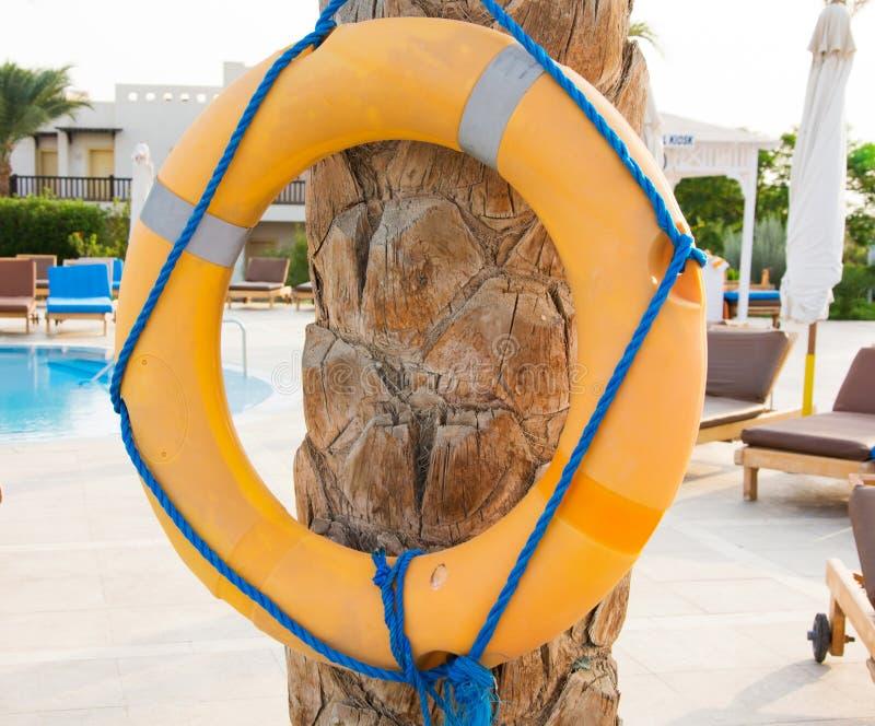 Gul livbojlivcirkel med det blåa repet som hänger på palmträdne arkivbilder