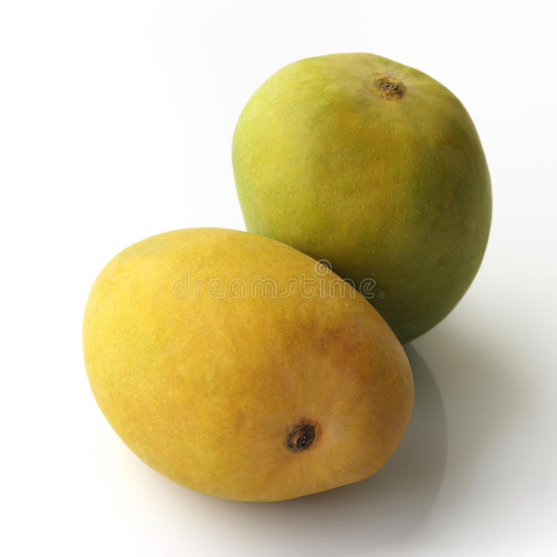 Gul och grön mango royaltyfria bilder